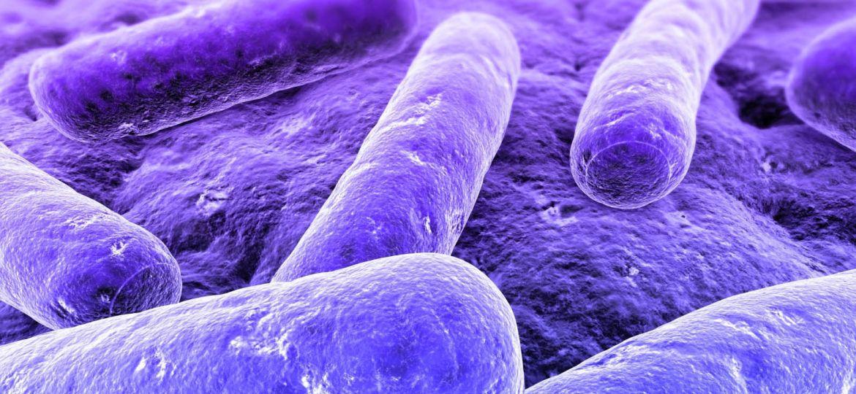 article_antibiotic-resistance