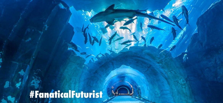 article_dubai_aquarium