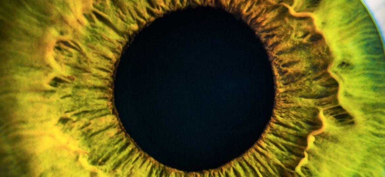 article_eye