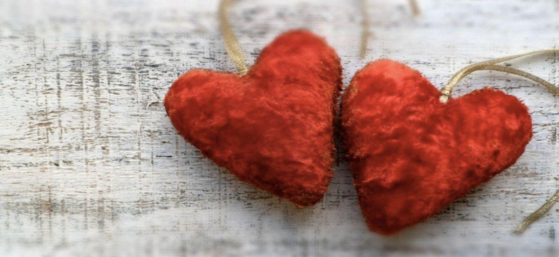 article_heartstem