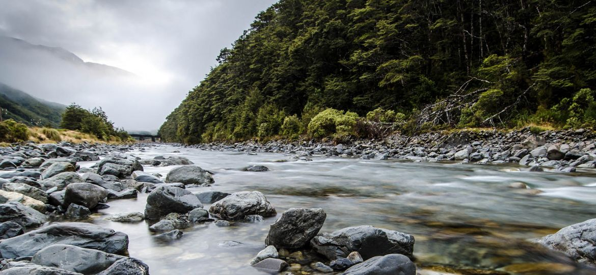article_nzriver