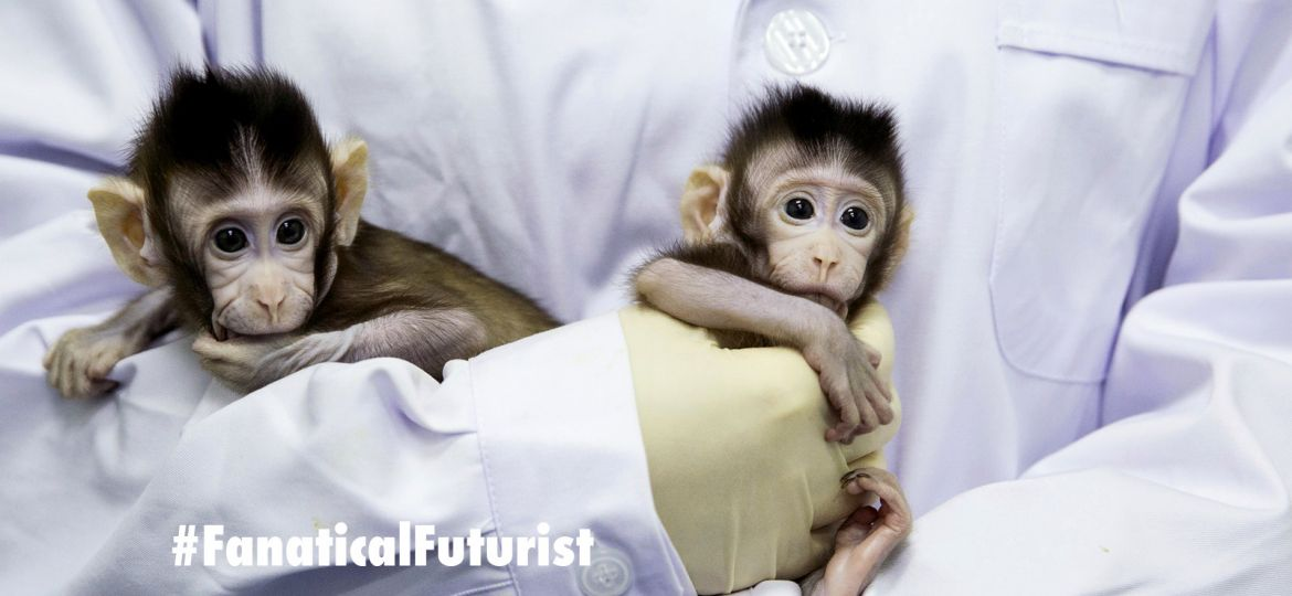 future_monkies