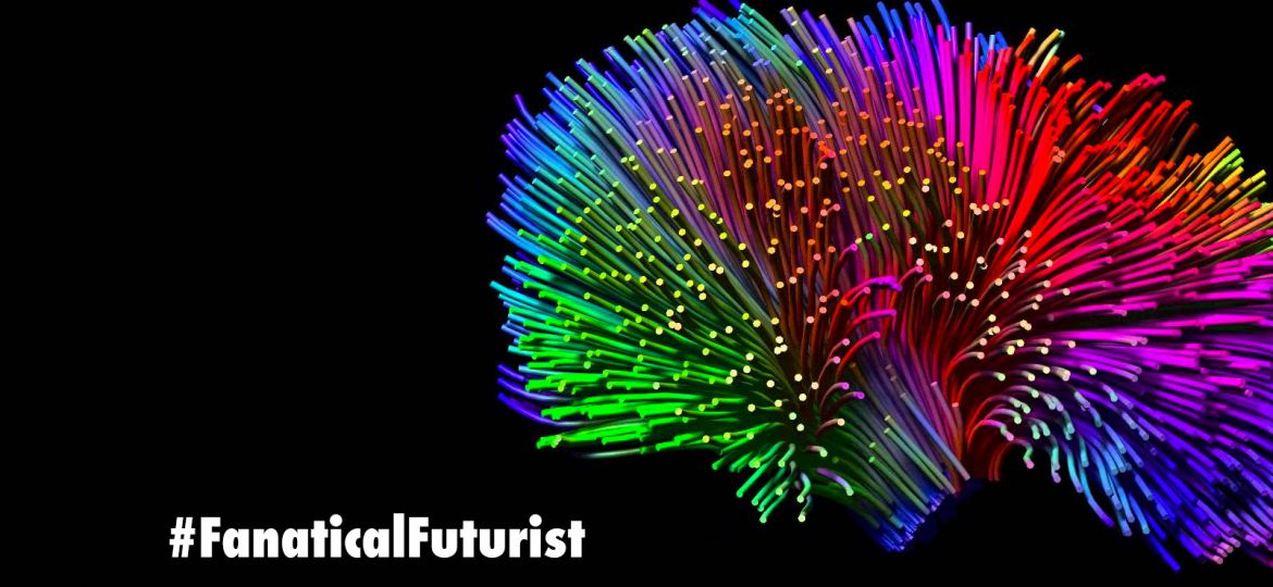 futurist_whole_brain_simulation