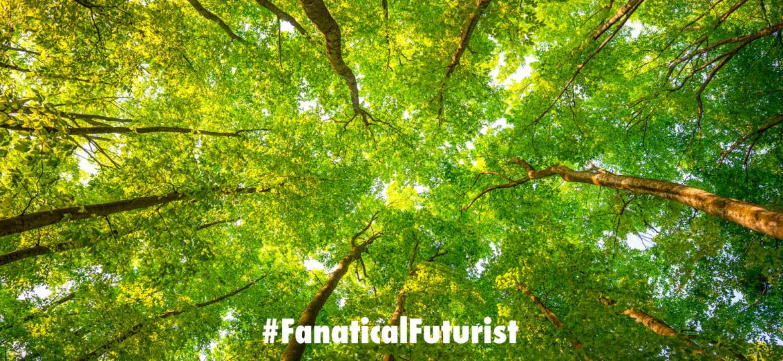 futurist_tree_glue_plastics