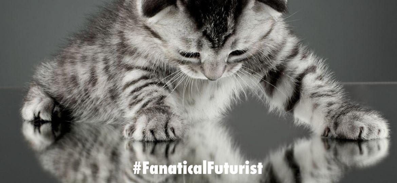 futurist_mirror