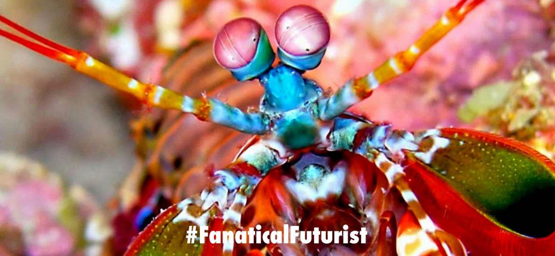 futurist_biological_cameras