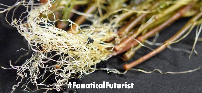 futurist_robot_plants