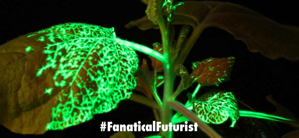 futurist_synthetic_biology