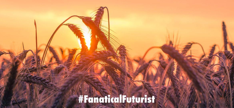 futurist_crops