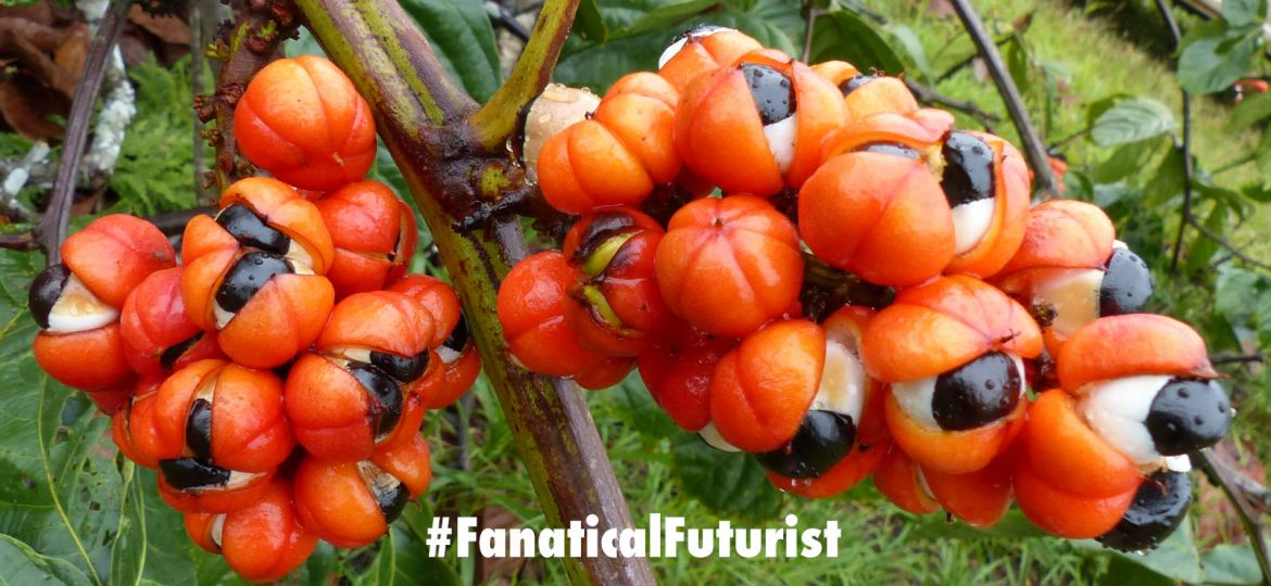 Futurist_superplants