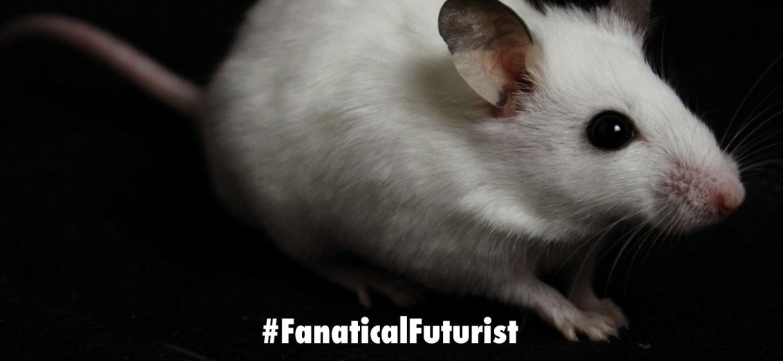 futurist_infrared_mice