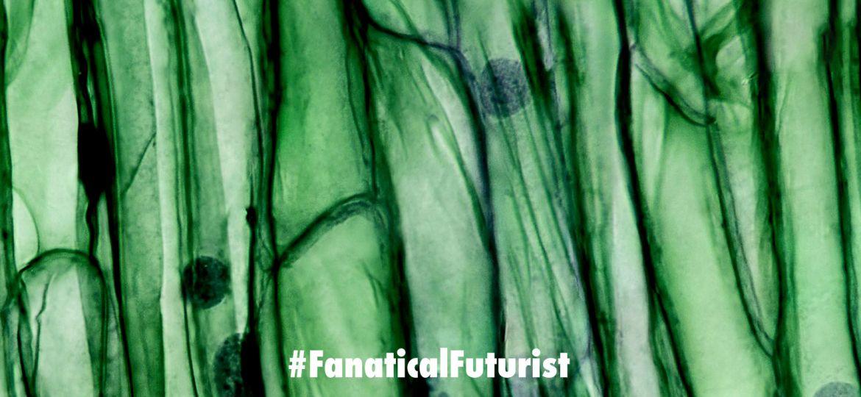 futurist_living_materials
