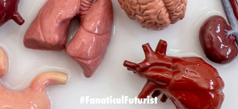 futurist_4d_bioprinting