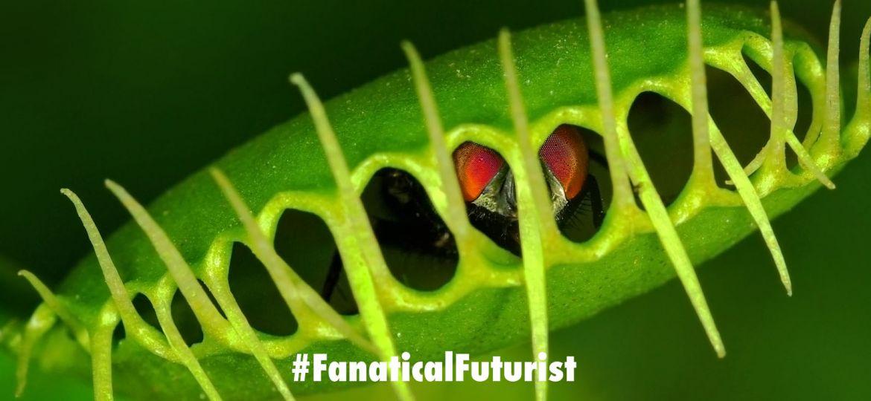 futurist_shape_shifting_materials
