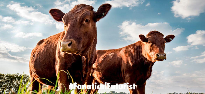 futurist_super_cows_crispr