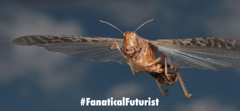 futurist_cyborg_locust
