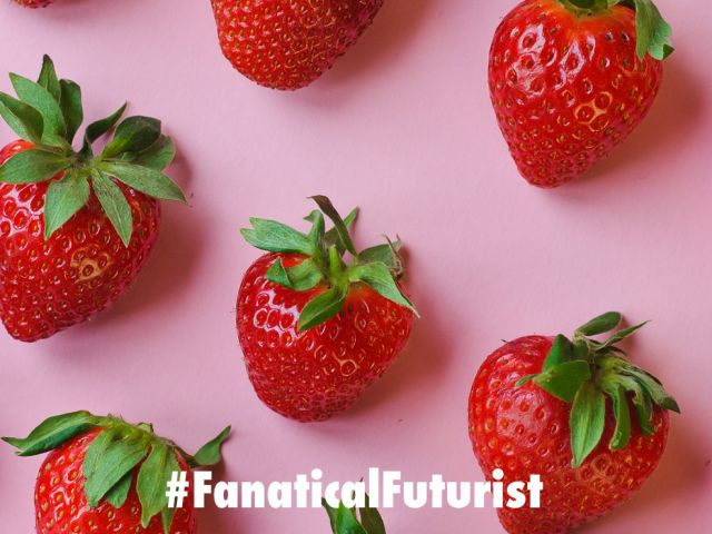 futurist_edible_electronics