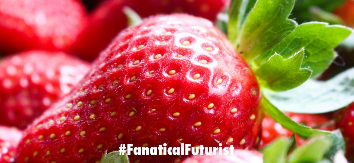 futurist_strawberry_robot