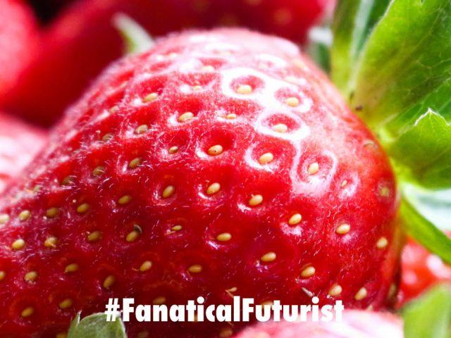 futurist_strawberry_robot