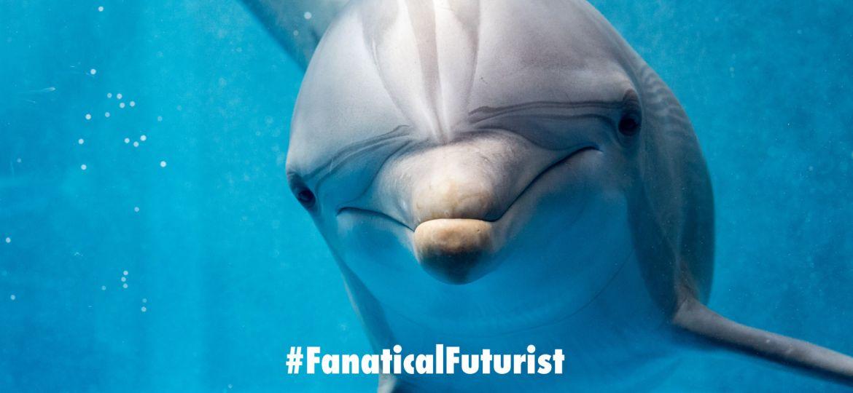 futurist_dolphins_robots
