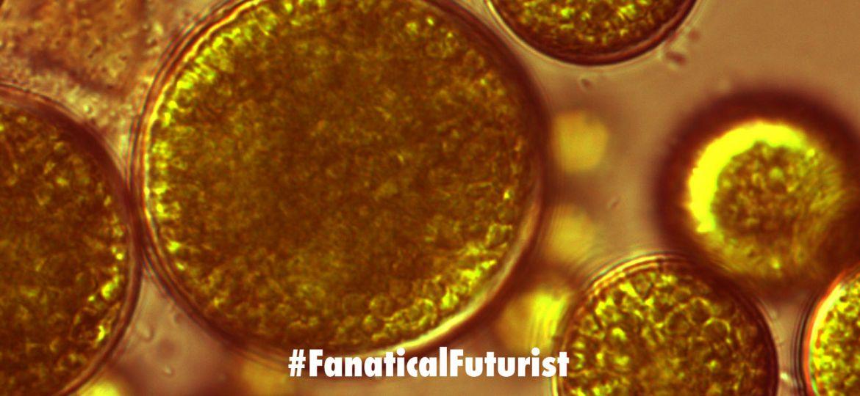futurist_mars_algae