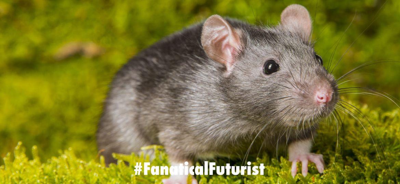 futurist_paralysis_mouse