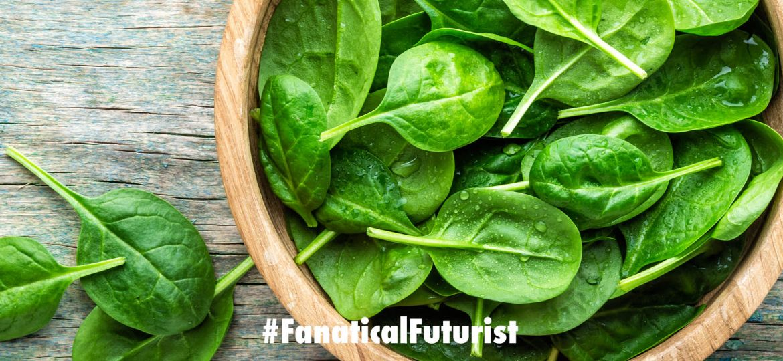futurist_plants
