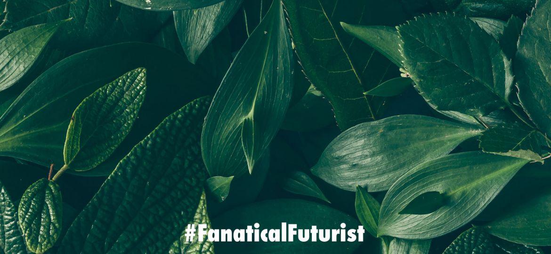 Futurist_plants_comms