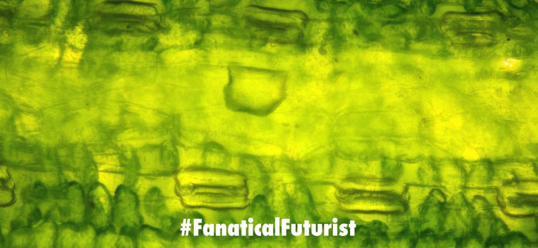 Futurist_hydrogenfuelcells
