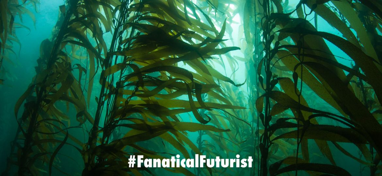 Futurist_kelp_elevator