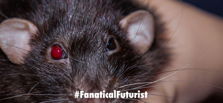 Futurist_rat_cyborg